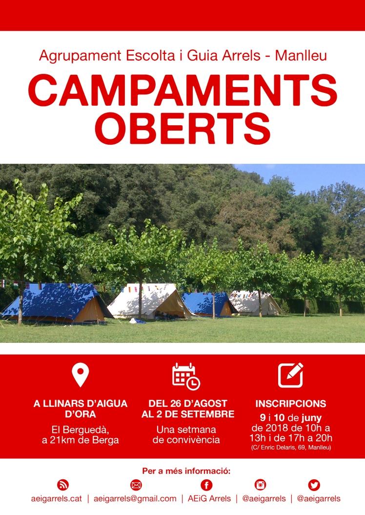 Campaments AEIGARRELSMANLLEU 2018 (1)